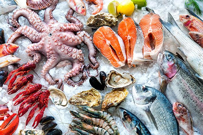 Pesce fresco - Prof. Nicola Sorrentino