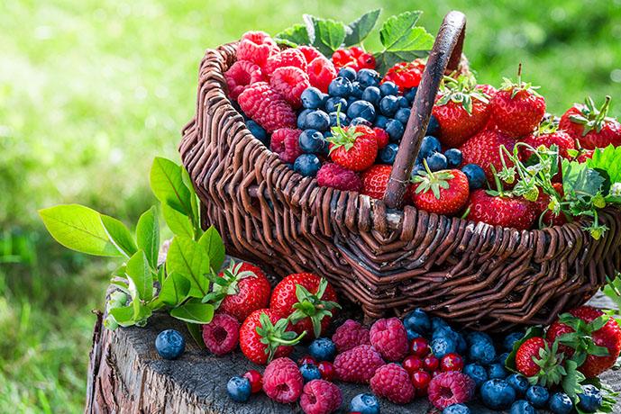 Frutti di bosco - Prof. Nicola Sorrentino