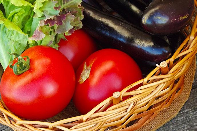 Pomodori, melanzane e lattuga - Prof. Nicola Sorrentino